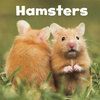 Hamsters; by Lisa J. Amstutz
