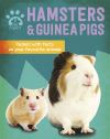 Hamsters & guinea pigs