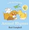 Animal rhymes, a lift-the-flap book